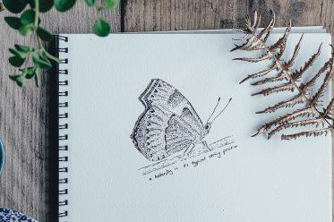 Zeichnung eines Schmetterlings – Vermeidungsleid